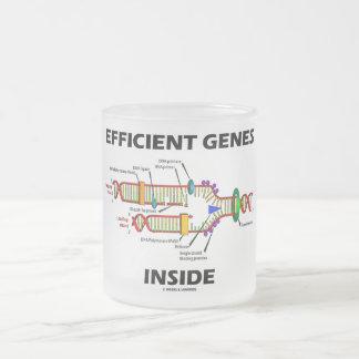 Interior eficiente de los genes (réplica de la DNA Taza Cristal Mate