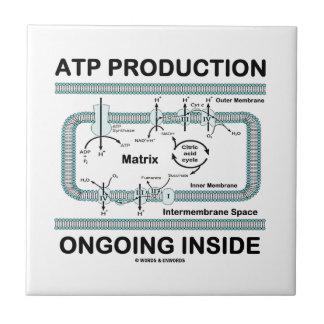 Interior en curso de la producción del ATP Tejas Ceramicas
