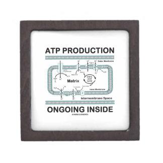 Interior en curso de la producción del ATP Cajas De Joyas De Calidad
