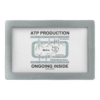 Interior en curso de la producción del ATP Hebillas De Cinturon