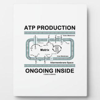 Interior en curso de la producción del ATP Placas Con Foto
