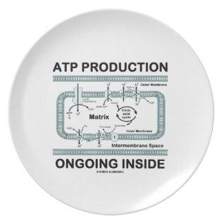 Interior en curso de la producción del ATP Platos Para Fiestas