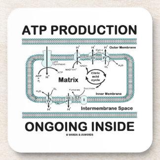 Interior en curso de la producción del ATP Posavaso