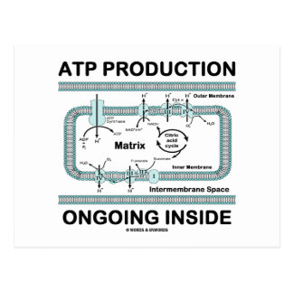 Interior en curso de la producción del ATP Postal