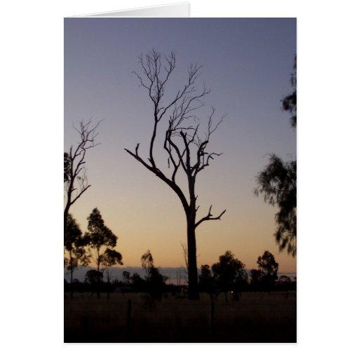 Interior esqueleto - tarjeta de la puesta del sol