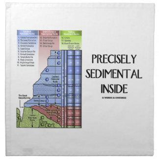 Interior exacto sedimentario (capas del Gran Servilleta De Papel