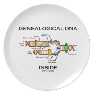 Interior genealógico de la DNA (actitud del Plato De Comida
