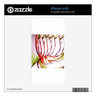 Interior Geometries of Flight and Fancy iPhone 4 Skins