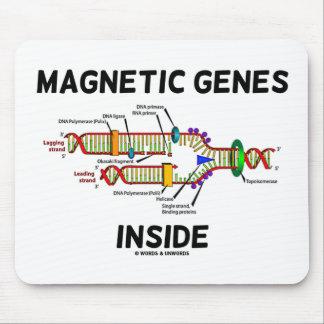 Interior magnético de los genes (réplica de la DNA Mousepads