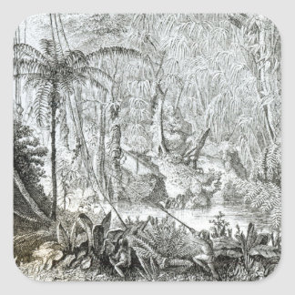 Interior of a Primeval Forest in the Amazons Square Sticker