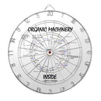 Interior orgánico de la maquinaria (ciclo de