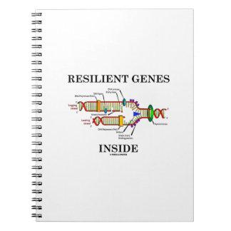 Interior resistente de los genes (réplica de la cuaderno