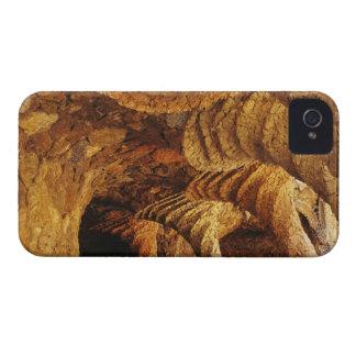 Interior vault (stone) Case-Mate iPhone 4 case