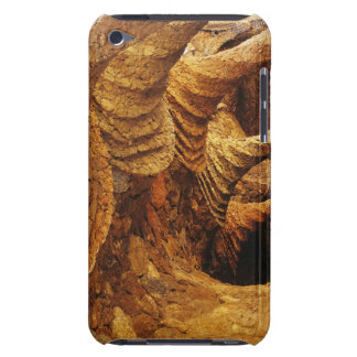 Interior vault (stone) iPod touch cases
