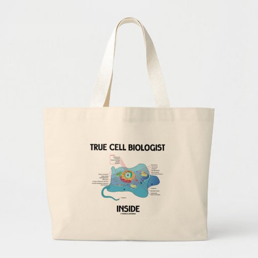 Interior verdadero del biólogo de célula (eucariot bolsa lienzo