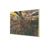 Interior View of the JR Simplot Dehydrating Co Canvas Print