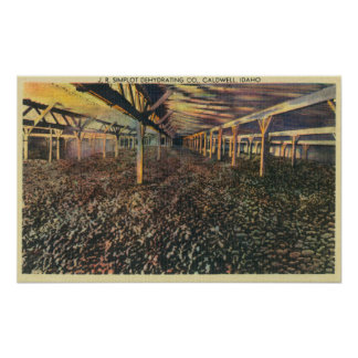 Interior View of the JR Simplot Dehydrating Co Poster