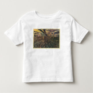 Interior View of the JR Simplot Dehydrating Co Toddler T-shirt
