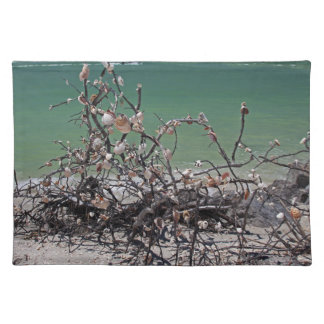 Interlaced Infatuation Cloth Placemat
