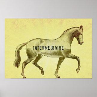 INTERMEDIDIAIRE 19x13 Print