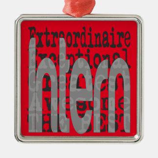 Intern Extraordinaire Metal Ornament