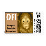 International dulce de la fundación del orangután sellos