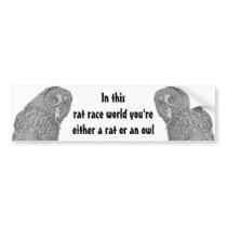 International Owl Day-4th August-Endangered Specie Bumper Sticker