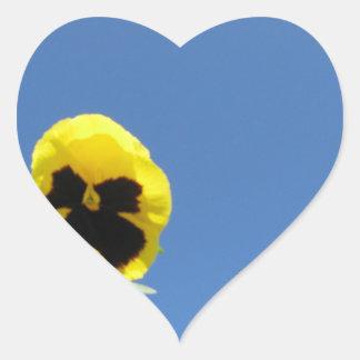 International Pansy Heart Sticker