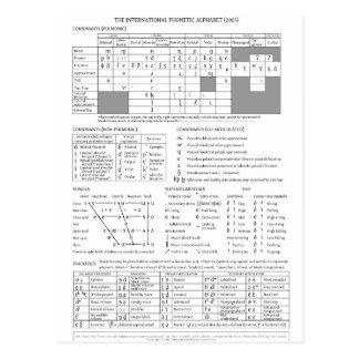 International Phonetic Alphabet Postcard
