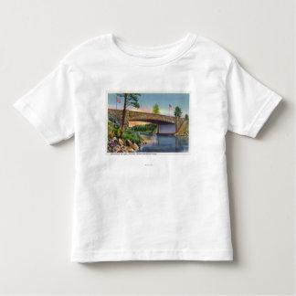 International Rift Span of International Toddler T-shirt
