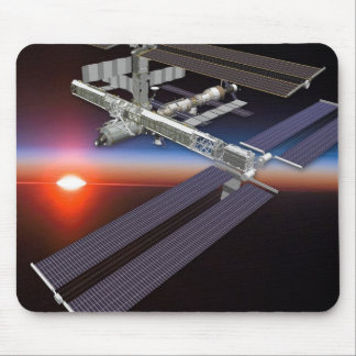 International Space Station - August 2006 Mouse Mats