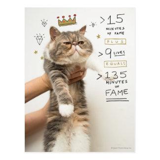 Internet Cat Celeberity Postcard