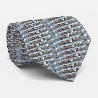 Internet impreso 2 lados de la antena de plato de corbatas