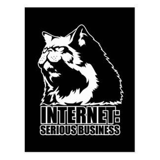 Internet Negocio serio camiseta divertida del lo Postales