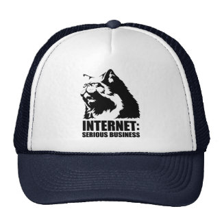 Internet: Serious Business (lolcat funny tshirt) Trucker Hat