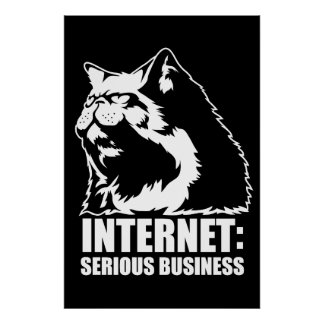 Internet: Serious Business (lolcat funny tshirt) Poster