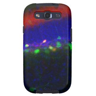 Interneuron 2 galaxy SIII covers