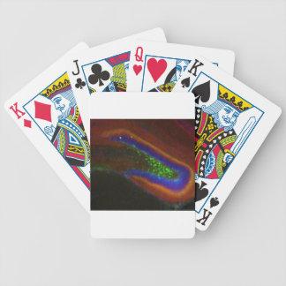 Interneuron 4 baraja de cartas