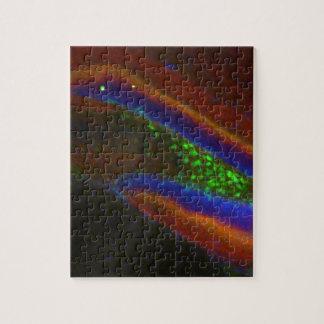 Interneuron 4 puzzles con fotos