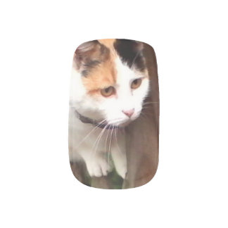 intersting Cat Nail Covering Minx® Nail Wraps
