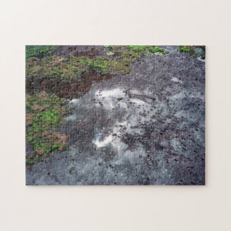Intertidal shelf jigsaw puzzle