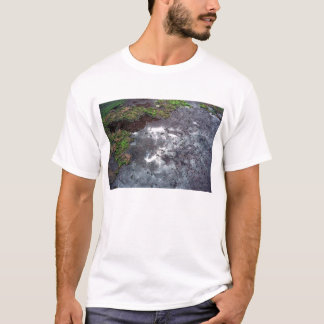 Intertidal shelf T-Shirt