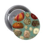 Intestina et Mollusca Linnaei 2 Inch Round Button