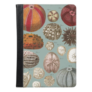 Intestina et Mollusca Linnaei iPad Air Case