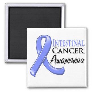 Intestinal  Cancer Awareness Ribbon 2 Inch Square Magnet