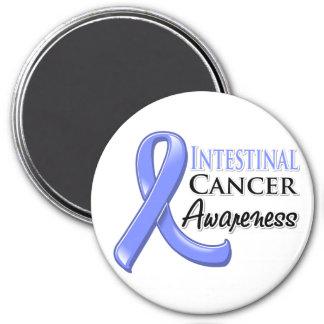 Intestinal  Cancer Awareness Ribbon 3 Inch Round Magnet
