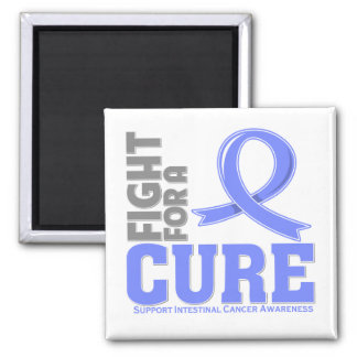 Intestinal Cancer Fight For A Cure 2 Inch Square Magnet