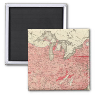 Intestinal Diseases Deaths in the US 2 Inch Square Magnet