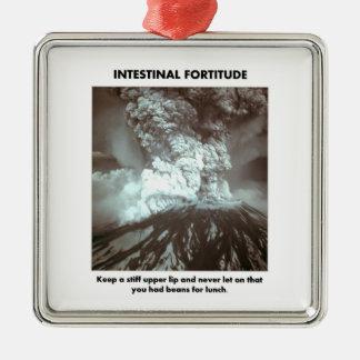 intestinal-fortitude-keep-a-stiff-upper-lip metal ornament