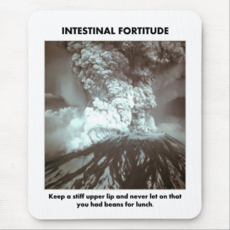 intestinal-fortitude-keep-a-stiff-upper-lip mouse pad